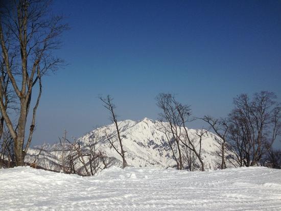 良かったです|シャルマン火打スキー場のクチコミ画像