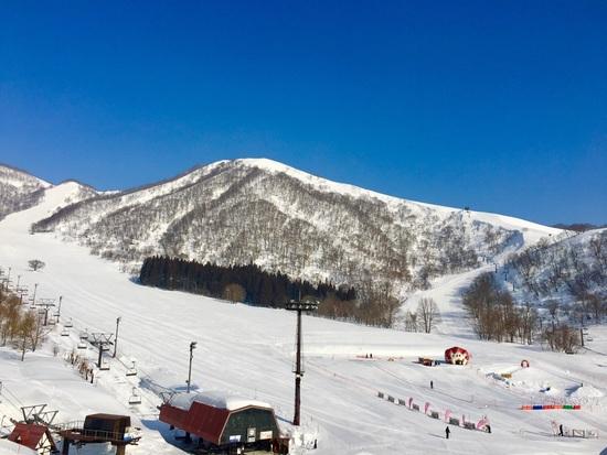 満足度の非常に高いスキー場!|白馬コルチナスキー場のクチコミ画像