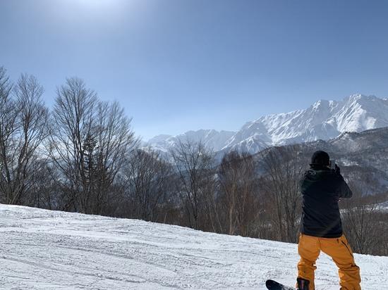 やっと晴れました。|栂池高原スキー場のクチコミ画像