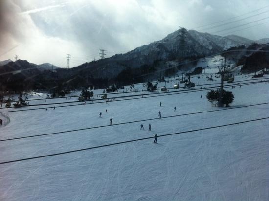 子どもが沢山|苗場スキー場のクチコミ画像