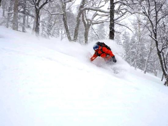 平成ラストパウダー|栂池高原スキー場のクチコミ画像