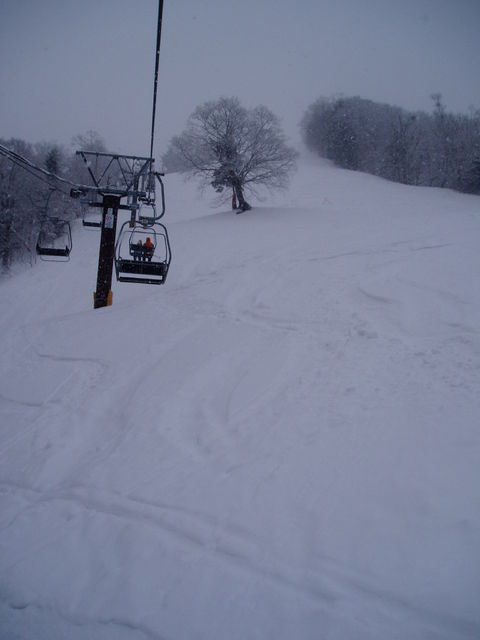 雪質は最高です|平湯温泉スキー場のクチコミ画像1