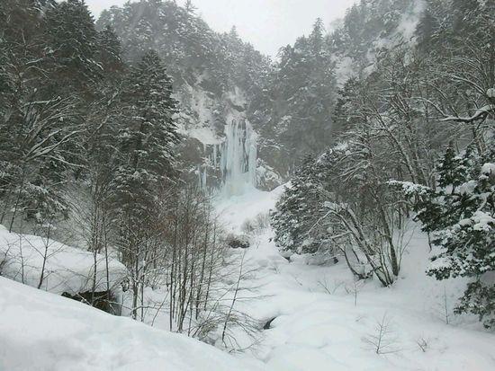 雪質は最高です|平湯温泉スキー場のクチコミ画像3