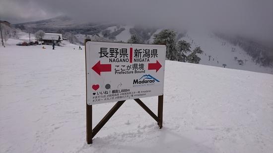 県境の写真|斑尾高原スキー場のクチコミ画像