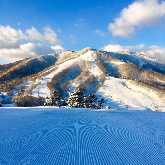 本当に素晴らしいスキー場|斑尾高原スキー場のクチコミ画像