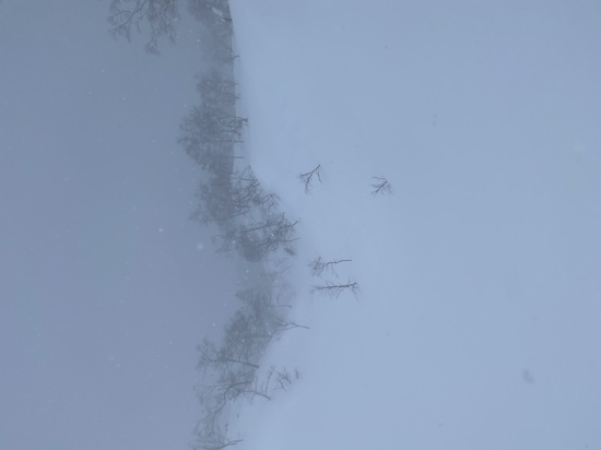 視界不良 大雪山旭岳ロープウェイのクチコミ画像2