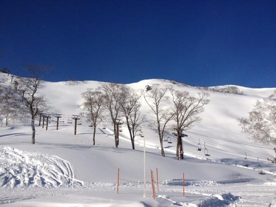 関東一のパウダースポット!!!|谷川岳天神平スキー場のクチコミ画像