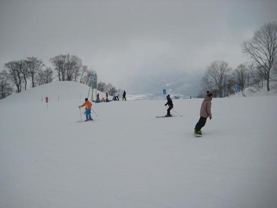 リスを見ました。|白馬八方尾根スキー場のクチコミ画像