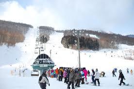 混んでますがアクセスが良くていい!|スプリングバレー泉高原スキー場のクチコミ画像1