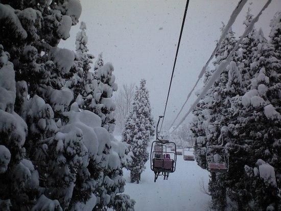 新雪|六日町八海山スキー場のクチコミ画像