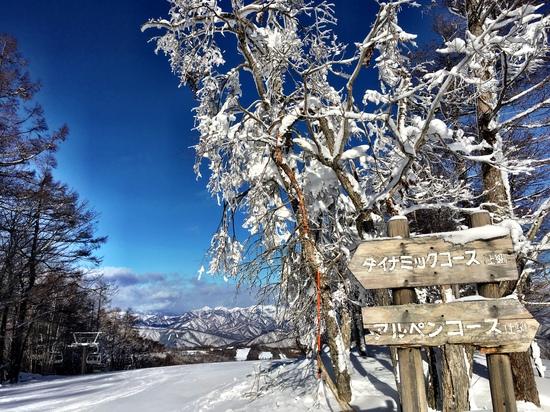 エーデルワイススキーリゾートのフォトギャラリー3
