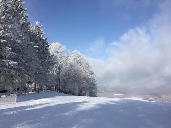 白樺高原国際スキー場のフォトギャラリー5