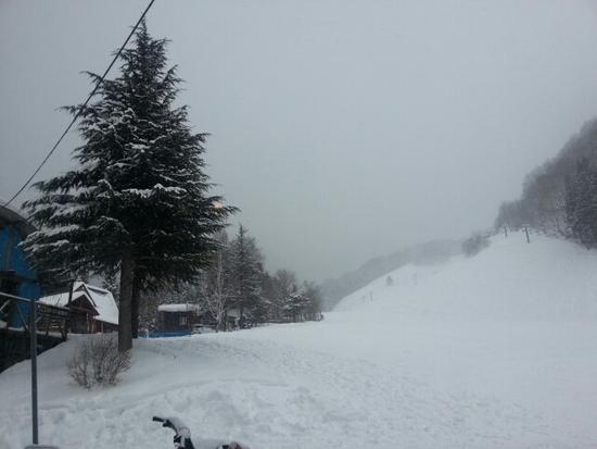 雪質も最高♪|ホワイトバレースキー場のクチコミ画像