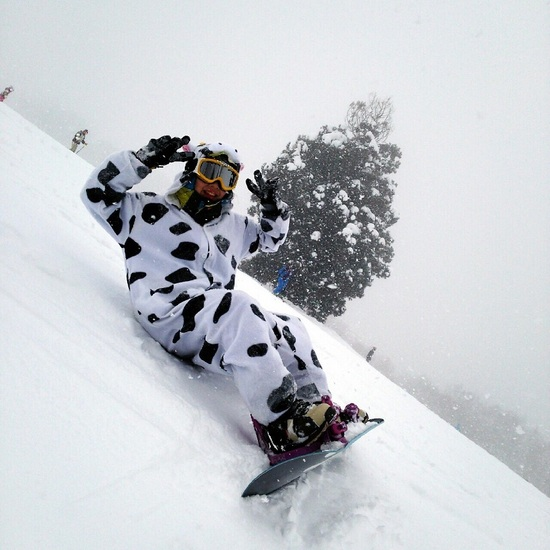 野沢牛です|Hakuba47 ウインタースポーツパークのクチコミ画像