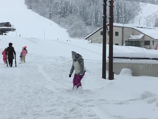 やっと雪|ニュー・グリーンピア津南スキー場のクチコミ画像