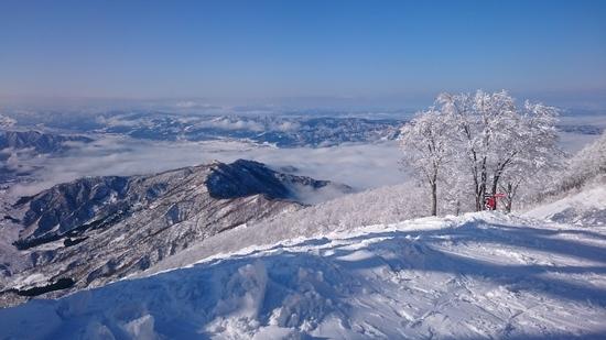 新雪最高!|六日町八海山スキー場のクチコミ画像