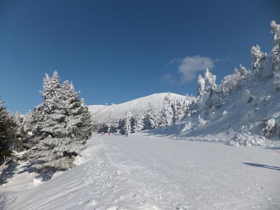 蔵王の雄大さに感動しました。|蔵王温泉スキー場のクチコミ画像