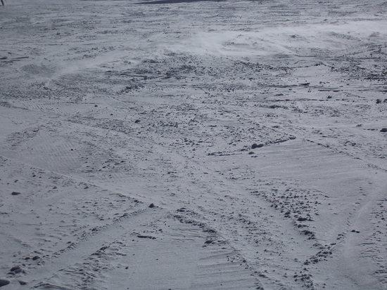 今シーズンは人工雪ばかり|鷲ヶ岳スキー場のクチコミ画像