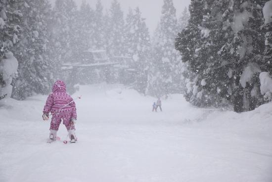 もう豪雪!|阿仁スキー場のクチコミ画像