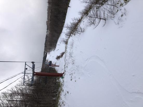 固めだけどパウダーあり!|パルコールつま恋スキーリゾートのクチコミ画像