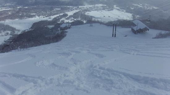 121212栂池高原|栂池高原スキー場のクチコミ画像