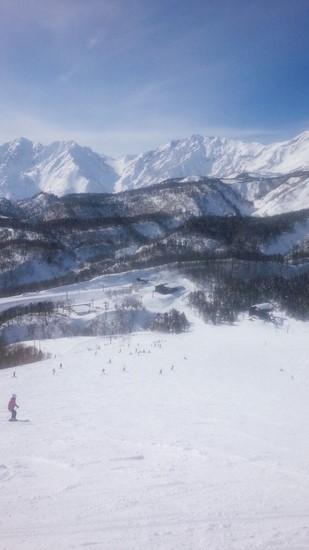 いい天気!|栂池高原スキー場のクチコミ画像