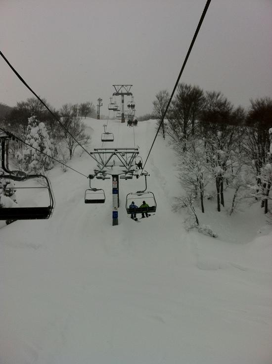 雪にも負けず・・・|GALA湯沢スキー場のクチコミ画像1