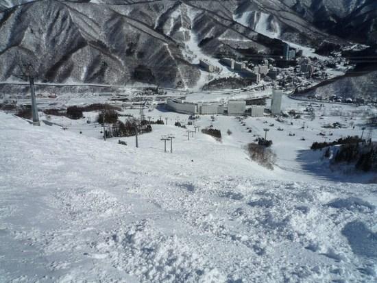 小学生以下無料です|苗場スキー場のクチコミ画像