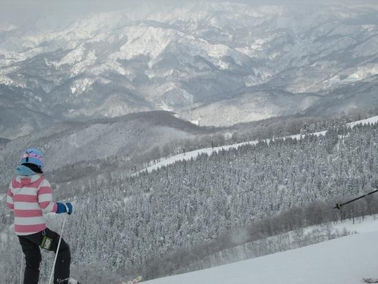 感じのいいスタッフ|スキージャム勝山のクチコミ画像