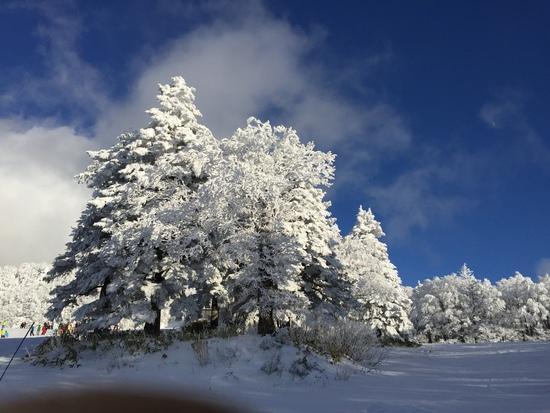 雪不足だけど、さすが蔵王温泉スキー場|蔵王温泉スキー場のクチコミ画像
