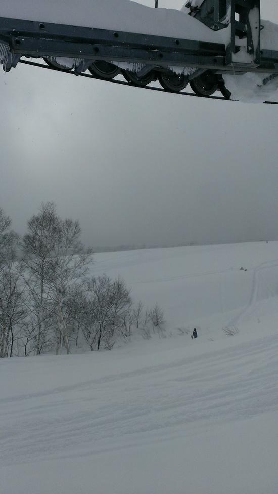 パウダー!|栂池高原スキー場のクチコミ画像