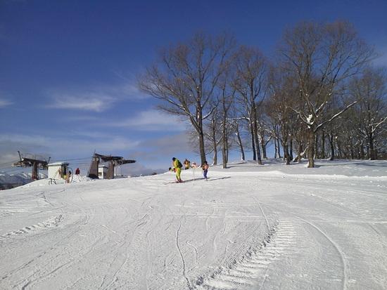 家族スキーに最適です|ひるがの高原スキー場のクチコミ画像