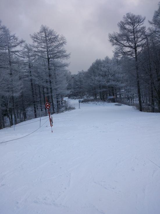 上手くなった気になるゲレンデ|湯の丸スキー場のクチコミ画像3