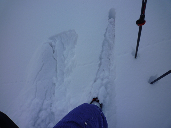 気分を変えて平日スキー|ブランシュたかやまスキーリゾートのクチコミ画像