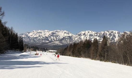 やはり暖冬‥。|戸隠スキー場のクチコミ画像