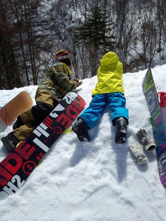 春スキー|ダイナランドのクチコミ画像