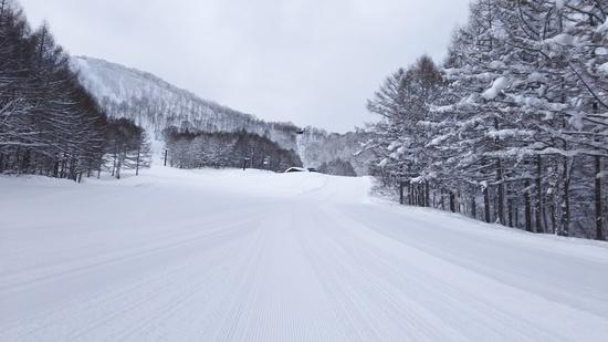 朝イチ独り占め|斑尾高原スキー場のクチコミ画像