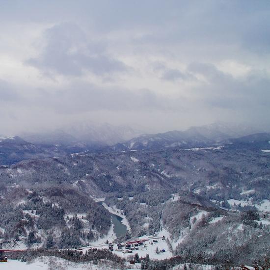 いのしし汁|さかえ倶楽部スキー場のクチコミ画像