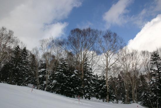 ゴンドラ30分待ち|パルコールつま恋スキーリゾートのクチコミ画像2