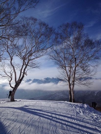 日常を忘れる世界|戸隠スキー場のクチコミ画像