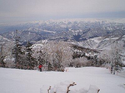 一日では滑り切ることはできないです|かぐらスキー場のクチコミ画像