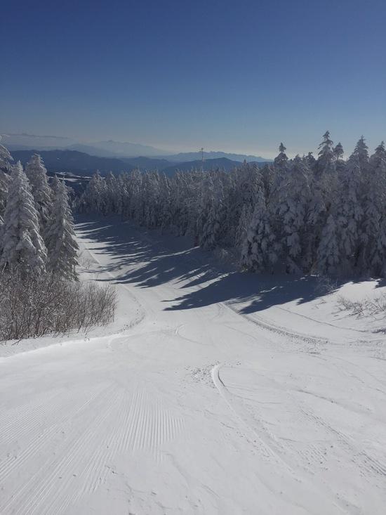 雪質&天気最高|パルコールつま恋スキーリゾートのクチコミ画像1