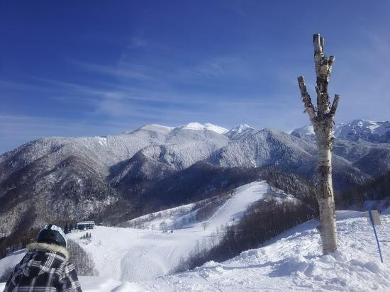 快晴|飛騨ほおのき平スキー場のクチコミ画像2