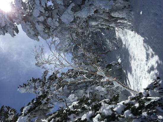 ゲレンデから簡単アクセス別世界へ|菅平高原スノーリゾートのクチコミ画像3