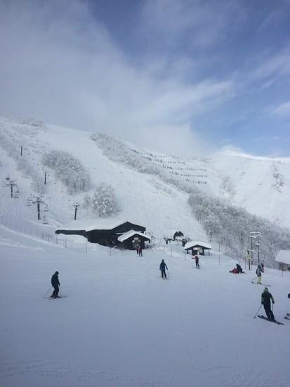 最高!|白馬八方尾根スキー場のクチコミ画像
