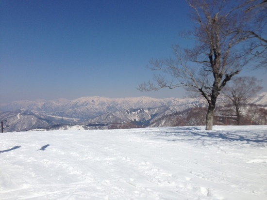 シーズンが長い|かぐらスキー場のクチコミ画像