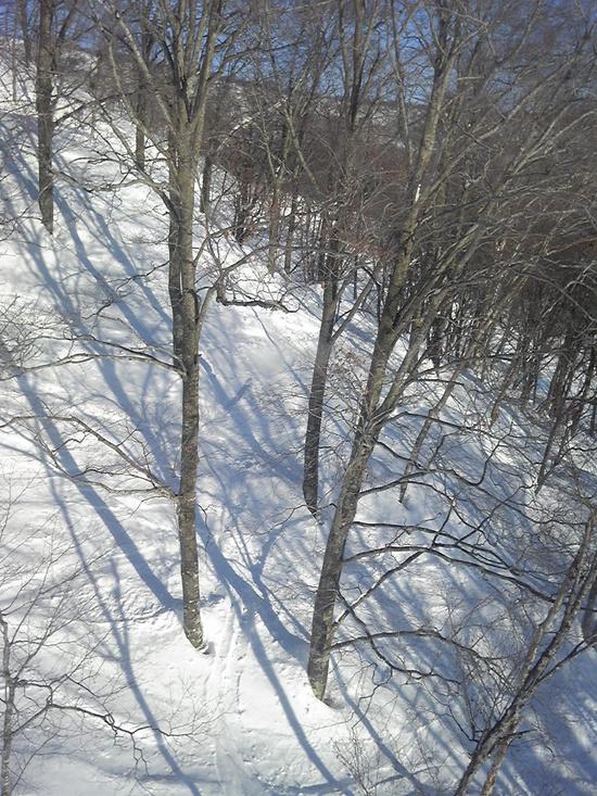 寒い!!雪質上々|HAKUBAVALLEY 鹿島槍スキー場のクチコミ画像