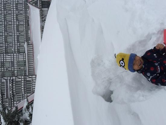 ふかふかな雪で大はしゃぎ|白馬コルチナスキー場のクチコミ画像