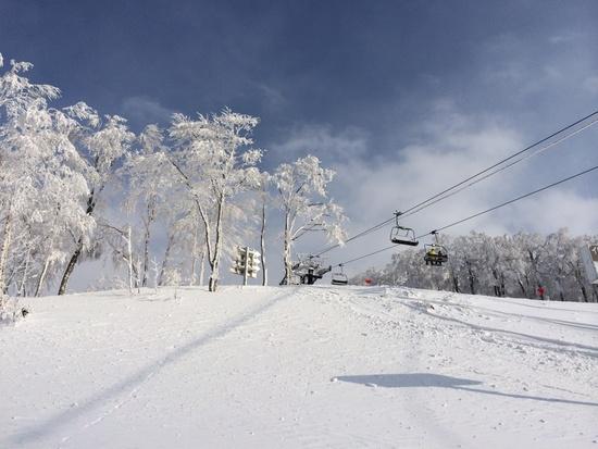 豊富なコース|スキージャム勝山のクチコミ画像