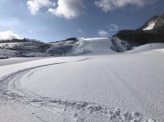 パウダー楽しめました|八幡平市 田山スキー場のクチコミ画像